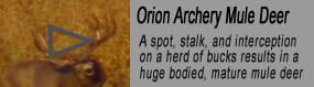 Orion Thumbnail