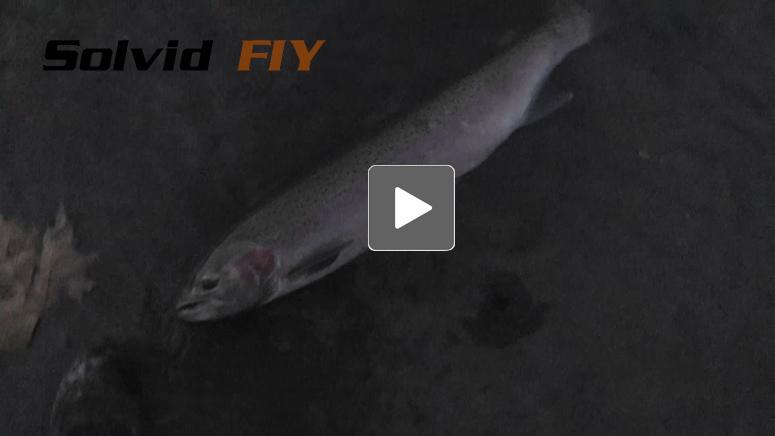 POV Fishing Head Cam Videos