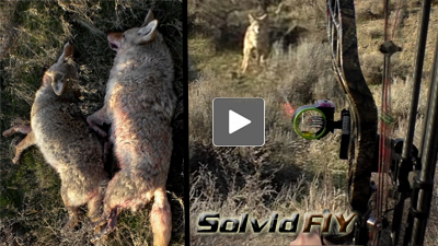 head camera Archery coyote bow hunting