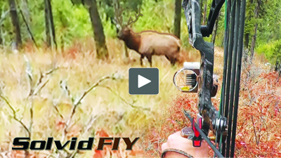 head camera Archery whitetail deer bow hunting